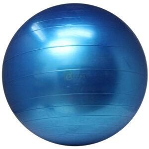 King Lion 75cm Gym Ball Imported Anti Burst