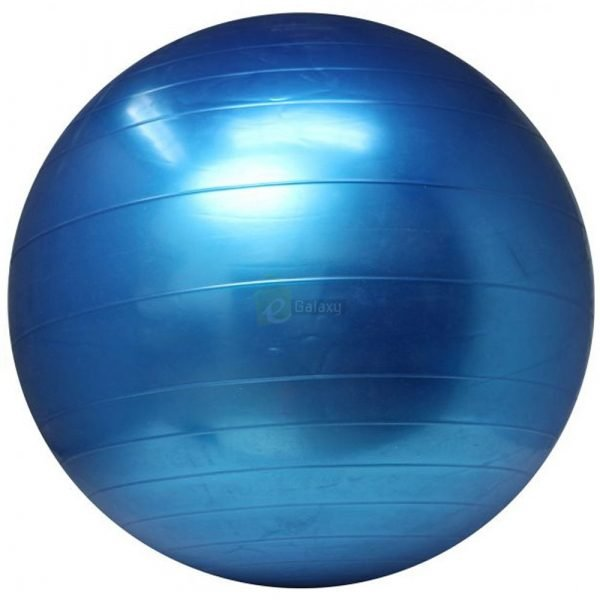 King Lion 75cm Gym Ball Imported Anti Burst